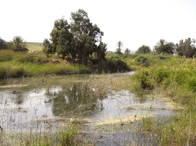 Marokko - Nationalpark Souss-Massa